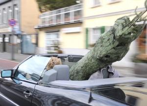 Allianz_Pressefoto_Weihnachtsbaumtransport_im_Cabrio_28_11_2014