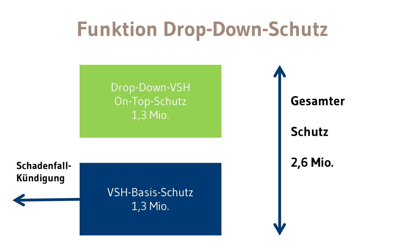 Drop-Down-Schutz 2